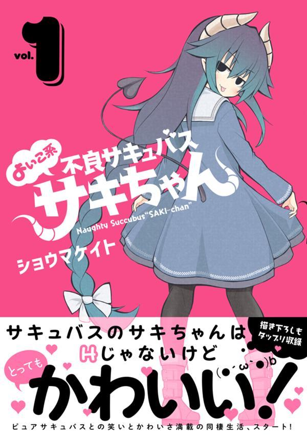 sakichan_cover+.jpg