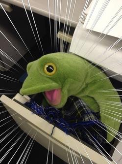 机あらはみだす巨大カエル